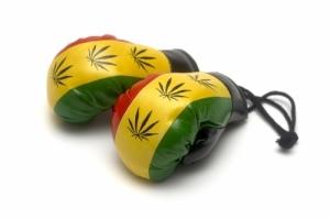 co2 oil, vaporizer pens, cannabis